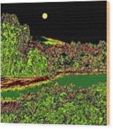 Moonlit Kaloya Park Wood Print