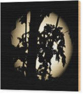 Moonlit Leaves No 1 Wood Print