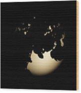Moonlit Leaves No 2 Wood Print