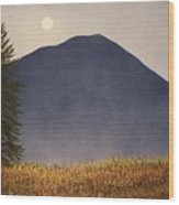 Moonlit Mountain Meadow Wood Print