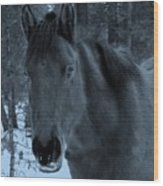 Moonlit Stallion Wood Print