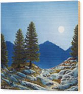 Moonlit Trail Wood Print