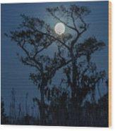Moonrise Over Wetlands Wood Print
