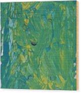 Moons In Galaxy Supernova 1987a Wood Print