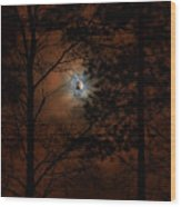 Moonshine 04 Bad Moon Rising Wood Print