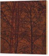 Moonshine 11 Red Sky Wood Print