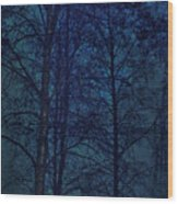 Moonshine 12 Blue Sky Wood Print