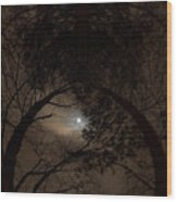 Moonshine 14 The Trees Wood Print