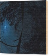 Moonshine 15 Fishy Wood Print