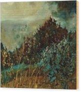 Moonshine 5642 Wood Print