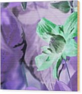 Moonwalk Clematis Wood Print