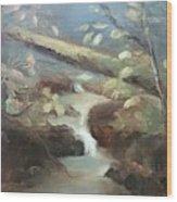 Moore Ck, Asheville, Nc Wood Print
