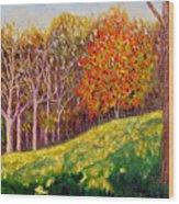 Mooresville 10 11 Wood Print