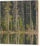 Moose Creek Reservoir Wood Print