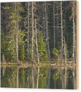 Moose Creek Reservoir Wood Print