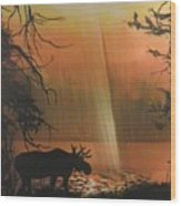 Moose In The Morning Wood Print