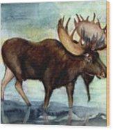 Moose Reflections Wood Print