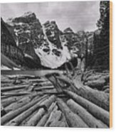 Moraine Lake Driftwood No 2 Wood Print