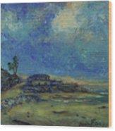 Moran Lake Santa Cruz California Landscape 9 Wood Print