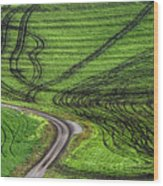 Moravian Patterns Wood Print