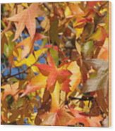 More Autum Leaves Wood Print