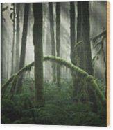 More Beams Of Light Wood Print