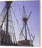 More Mayflower In Mystic Wood Print