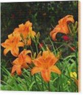More Orange Daylilies Wood Print