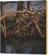 More Roots In Creek Wood Print