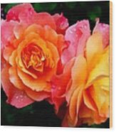 More Roses For Anne Catus 1 No. 1 H B Wood Print