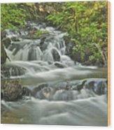 Morgan Falls 4584 Wood Print