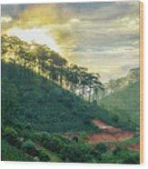 Moring In Dalat Wood Print