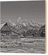 Mormon Row Too Wood Print