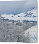 Mormon Tabernacle In Snow II Wood Print