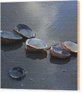 Morniing Clams II Wood Print