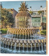 Morning At Pineapple Fountain Wood Print