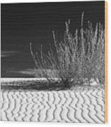 Morning At White Sands  Wood Print