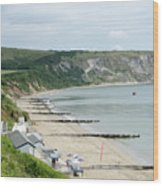 Morning Bay Pt Looking Up Swanage Bay On A Summer Morning Beach Scene Wood Print by Andy Smy