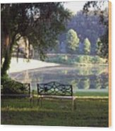 Morning By The Pond Wood Print