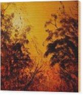 Morning Canopy Wood Print