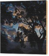 Morning Dragon Wood Print