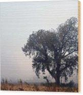 Morning Fog - The Delta Wood Print