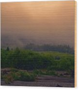 Morning Fog In Olympic National Park Wood Print