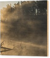 Morning Fog In The Boundary Waters Wood Print