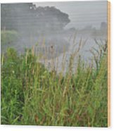 Morning Fog On Glacial Park Pond Wood Print
