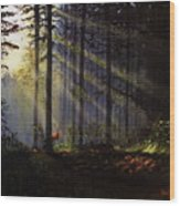 Morning Glow In The Forest Wood Print