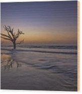 Morning Glow On Edisto Island Wood Print