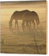 Morning Grazing Wood Print