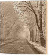 Morning Ice And Fog Wood Print