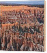 Morning In Bryce Canyon Wood Print